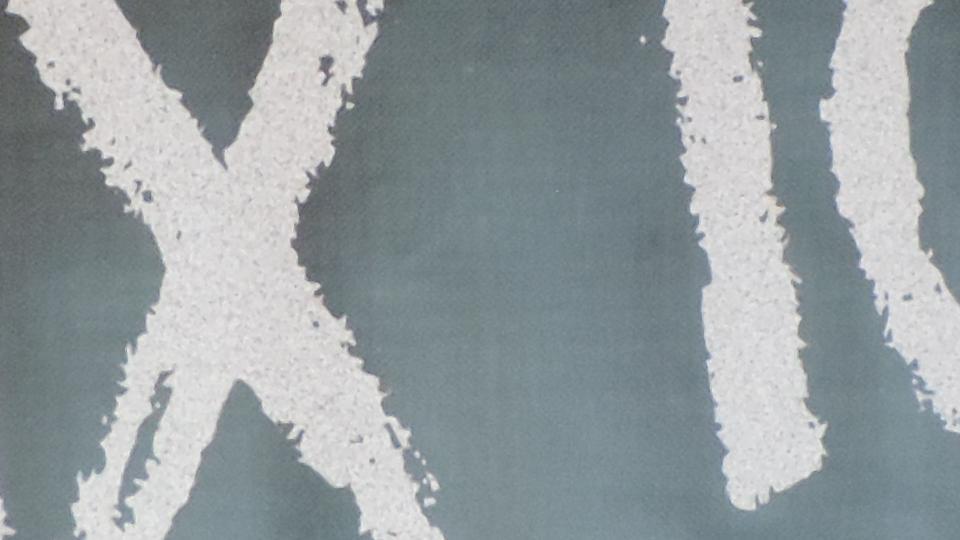 Schriftzug Ohne Moss nix los